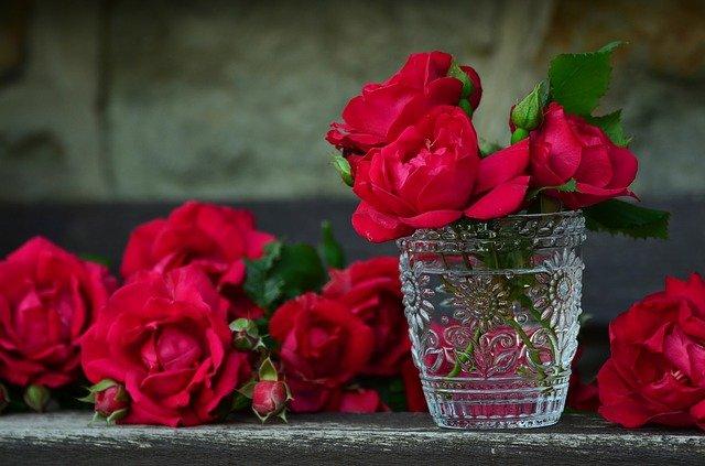 růže ve skleničce